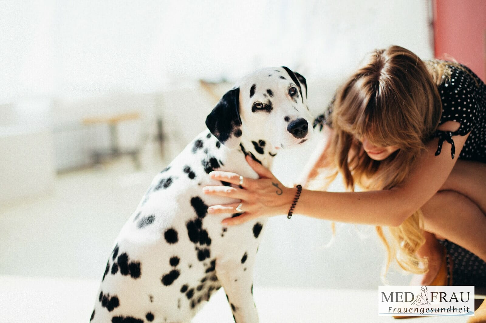 Doxycyclin Tabletten für Hunde